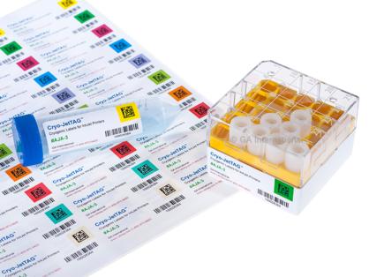 Eine Kryobox und ein 50-ml-Röhrchen mit farbigen kryogenen Inkjet-Etiketten, die mit Text und Barcodes bedruckt sind und sich auf einem Blatt gedruckter Cryo-JetTAG-Etiketten befinden.
