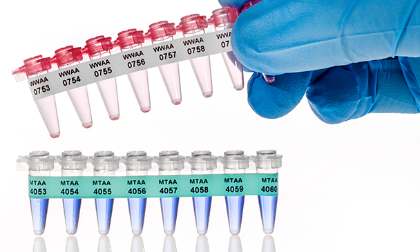 JTT-269 PCR Tubes Labels