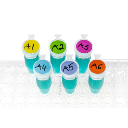 A clear rack with six microtubes, filled with a blue liquid, labeled with LabTAG cryogenic writable color dots.
