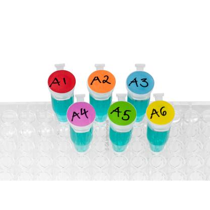 Ein durchsichtiges Gestell mit sechs Mikroröhrchen, gefüllt mit einer blauen Flüssigkeit, gekennzeichnet mit LabTAG-kryogenen, beschreibbaren Farbpunkten.