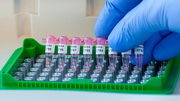 PCRJTT-269-use2