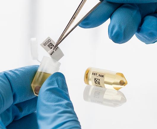 Eine behandschuhte Hand, die mit einer Pinzette ein Thermotransferetikett zum Einbetten von Harz in eine Kapsel aus flüssigem Harz und einer Gewebeprobe anbringt.