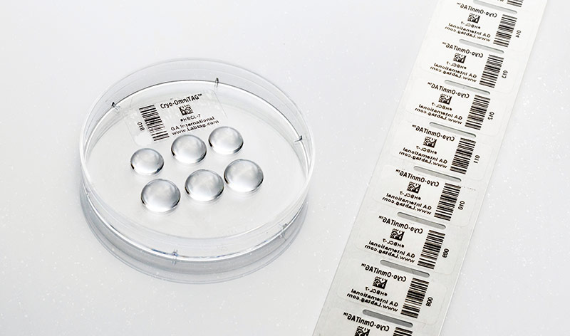 An IVF culture plate with the bottom labeled with a reverse-printed clear label, next to a strand of barcode printed cryo plate labels.